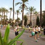 Mallorca, Marathon und Marketing  (1/3)